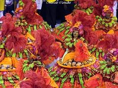 Salgueiro_Carnaval 2013_Rio de Janeiro (FM Carvalho) Tags: carnival brazil rio brasil riodejaneiro de samba do shot sony cybershot ala carnaval das sonycybershot cyber brsil baianas passarela sambdromo salgueiro marqus escoladesamba sapuca marqusdesapuca sambaschool passareladosamba carnavaldoriodejaneiro sambadrome riocarnival carnavalcarioca carnavaldorio aladasbaianas sambdromodorio sambdromocarioca sambdromodoriodejaneiro hx9v sonyhx9v carnaval2013