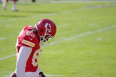 Dwayne Bowe