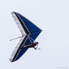 Hang Glider (fojazz) Tags: sanfrancisco hangglider olympusem5