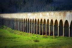 passaggi (Alessandra Leonetti) Tags: duomo toscana prato arezzo vasari acquedotto bestcapturesaoi blinkagain alessandraleonetti