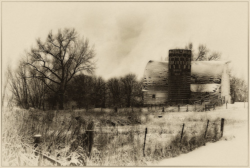 Winter, Farm Country