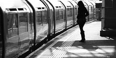 _MG_9782R Fine Line, Enlightenshade, Jon Perry, 18-2-13 (Jon Perry - Enlightenshade) Tags: reflection london lines silhouette line trainstation figure waitingforthetrain fineline thinline slimline 18213 jonperry enlightenshade arranginglightcom 20130218
