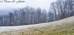 Snow Fall on the Pasture (travelphotographer2003) Tags: sky usa mountain snow woodland snowstorm stormy panoramic pasture westvirginia serenity snowfall whiteout stormysky freshness refreshment appalachianmountains purity tranquilscene fallingsnow beautyinnature webstercounty solitudealleghenymountains