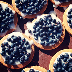 Blueberry, sweet condensed milk and cookies. (Lora Sutyagina) Tags: food blackberry zekhnovovillage kenozeronationalpark