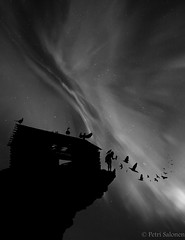 Mother nature bnw (petrisalonen) Tags: bnw lady nature finland auroraborealis northernlights birds hawk landscape