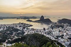 Most iconic view of Rio de Janeiro, Brazil (shooterb9) Tags: donamarta mirante lookout sunrise baiadeguanabara bay viewfromthetop rj riodejaneiro brasil brasilemimagens brazil wonderfulcity olympic olimpiada landscape rio2016 rio16 golden canon