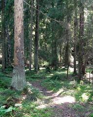 2016-08-19 Retki Uutelan Luonnonpuistoon (hetyfi) Tags: hety helsingintyttmtry uutela vuosaari finland suomi