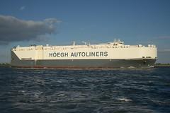 Hegh Jacksonville DST_8252 (larry_antwerp) Tags: roro pctc 9673379 hoegh hegh heghautoliners hoeghjacksonville heghjacksonville schip ship vessel        schelde