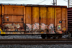 (o texano) Tags: houston texas graffiti trains freights bench benching verbs defthreats dts gy