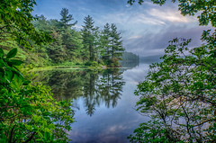 Morning-At-The-Lake (desouto) Tags: nature hdr pond lake water plants trees sky clouds