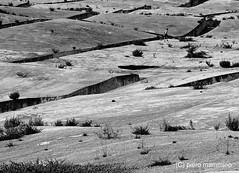 Sicily _ Gibellina _ Cretto di Burri (piero.mammino) Tags: sicilia sicily gibellina burri cretto landart art earthquake terremoto belice cement cemento ruins rovine