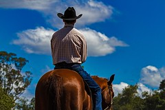 Stoic (Sterling67) Tags: stroud rodeo 2016 cowboy cowgirl dirt dust horse bull challenge courage outdoor