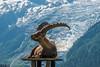 DSC_9615 (Costi Jacky) Tags: france naturereserve parcdemerlet