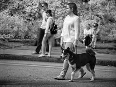 P9240011 (Syed HJ) Tags: olympusem5 olympus em5 fujian50mmf14 fujian50mm fujian 50mm cctvlens cctv streetphotography candidphotography street nashuanh nashua nh blackwhite blackandwhite bw infrared ir 950nm