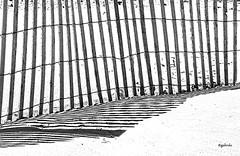 IMG_1746~Shadows (Cyberlens 40D) Tags: nj blackandwhite stripes fences light shadows sand beach canon abstracts