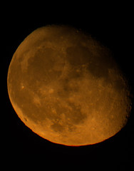 Moonrise (GRPhotog) Tags: celestron nextstar telescope canon 70d 1325mm 4se cincinnati ohio skyline tele zoom night outdoor olden view park incline district moon moonrise orange yellow cheese