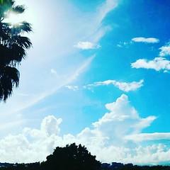 Blue s'y #ciel #sky#dream#reve#beau#soleil#martinique#nuage (cleefbalin) Tags: martinique soleil beau nuage sky dream ciel reve
