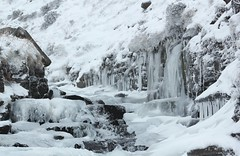 Winters Icy Grip (Derbyshire Harrier) Tags: winter snow ice waterfall derbyshire cascade icicles edale gritstone grindsbrookclough 2013 grindsbrook