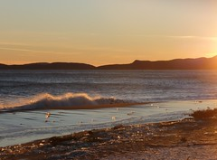 December Sunset (anng48) Tags: canada beach de soleil waves quebec vagues plage gulfofstlawrence qc septiles fergusonsunsetcoucher