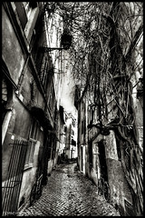 """Roma, Trastevere • <a style=""""font-size:0.8em;"""" href=""""http://www.flickr.com/photos/89679026@N00/8436799695/"""" target=""""_blank"""">View on Flickr</a>"""