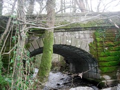 Glaze Brook Bridge South Brent Dartmoor (Bridgemarker Tim) Tags: rivers dartmoor glazebrook southbrent countybridges devonbridges