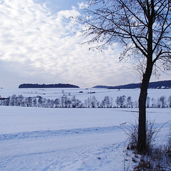 Dmmerung/ Dusk (schreibtnix on n' off) Tags: schnee trees winter snow germany landscape deutschland dusk structures dmmerung landschaft kurioses bume curiosities strukturen badwildungen olympustough schreibtnix