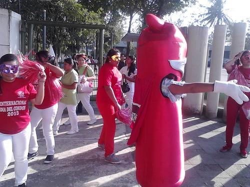 Veracruz, Mexico ICD 2013