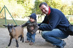 Visit to the Zoo (ThomasKohler) Tags: boy baby cute smile hat animal laughing fun zoo infant funny dad child sweet albert father goat son visit kind ziege hut laugh papa cuteness try tierpark mütze vater junge suess niedlich sohn besuch muetze neustrelitz