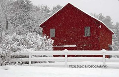 Red Barn Winter  **EXPLORE** (Vicki Lund Photography) Tags: winter red white snow nature water beautiful architecture clouds vintage fence buildings river fairgrounds woods nikon artist raw view natural fineart rustic barns maine newengland naturallight historic explore northamerica february vacationland eastcoast freelance snowcoveredtrees countryroads redbarns snowfalls cumberlandcounty freelancephotographer newgloucester followthelight maineartist fineartprints royalriver barnsofmaine rusticbarns barncalendar mainephotographer fineartlandscape mainetrees colorsnatural barnsinwinter fence~posts wwwvickilundphotographycom httponfbmevickilundphotographywelcome vickilund greatmainevacations