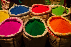 IMG_9074.jpg (#Hani#) Tags: vacation india fun colours urlaub holi indien 2012 farben hindistan renkler