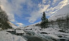 Cold Stream (Lars rstavik) Tags: winter snow cold norway norge stream sn sunnmre rsta mosdalen rossa rambjra