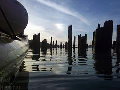 Paddling in the pilings (thamiter) Tags: california bridge water northerncalifornia boat kayak bayarea pointandshoot eastbay pilings portcosta contracosta carquinezstrait c123 shotfromakayak kodakeasysharesport wharfruins