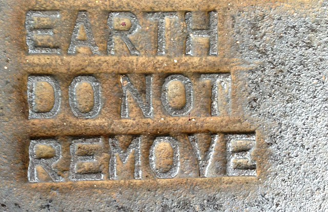 Please, Do Not Remove the Earth