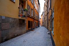 DSCF5349 (Peter Ghita) Tags: stockholm gamlastan city oldcity fujifilmxt1 samyangcsc12mmf20ncscs