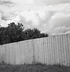 Half view to the other side (matthew.vortex) Tags: fence backyard clouds summer storm pentaxspotmeterv zonesystem anseladams yashica yashicamat124g aristaeduultra400 ilford ilfosol3 yellowfilter manual tlr mediumformat georgetown kentucky