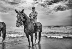 All Smiles (Padmanabhan Rangarajan) Tags: ganeshchathurthi ganesh immersion visarjan chennai mounted police horse policeman
