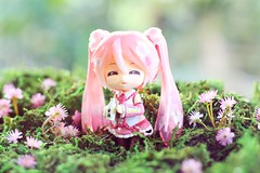 Happy Miku (Thai) Tags: nendoroid nendoworld figure figurine hatsunemiku vocaloid sakuramiku goodsmilecompany toys