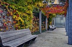 Luzern (welenna) Tags: luzern