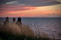 BFFs (Knarr Gallery) Tags: friends sunset clouds lakehuron landscape horizon water color nikon d300 nikon18200mmvriiafs summer evening gloaming
