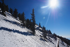 Bluebird day at Mt. Baldy (RobertCross1) Tags: california trees winter sun white snow mountains forest landscape losangeles interestingness bluesky omd sangabrielmountains mtbaldy