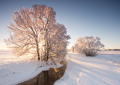 lilln III (Explored) (Andreas Hagman) Tags: trees winter sun snow colour ice water backlight river landscape dawn stream shadows sweden hoarfrost tripod bluesky nopeople explore scandinavia linkping sigma1020mm stergtland tracksinthesnow gndfilter vikingstad explored nordics graduatedneutraldensity lilln backlittree sonyalphaslta77