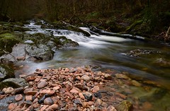PEBBLES OF THE RIVER ERME (russell D7000 (D80)) Tags: trees beauty contrast river rocks long exposure pebbles clear lichen dartmoor mosses riverscape ivybridge erme rnberme
