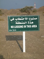 "Sign:  ""No logging in this area"" - ""    "" (John Steedman) Tags: oman muscat  sultanateofoman"