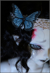 Butterfly Detail (BathorYume) Tags: doll des louise bjd corpse fairyland mnf darkelfsoo minifee bathoryume louiseashebola