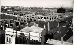 Sydney Station construction (State Records NSW) Tags: blackandwhite tree archives newsouthwales centralrailwaystation staterecordsnsw