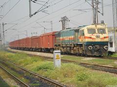 SBI WDG4 busy day (dennis_972000) Tags: delhi indian locomotive dennis railways railfanning irfca