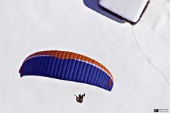 Winter Dream (Daniel Wildi Photography) Tags: winter snow mountains cold switzerland fly flying magic flight dream paragliding paraglider berneseoberland grindewald 2013 danielwildiphotography advancealpha5
