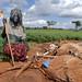 ©FAO/Ami Vitale / FAO