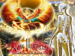phoenix newilluminatipsychedelicartimagesfree
