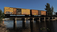 Cedar (Stalkin The Lines) Tags: graffiti railway trains cedar boxcar wh southflorida nsf freights rollingstock ceda railbox abox benching